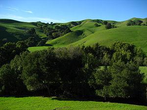 Briones Regional Park - Image: Lafayette Ridge Briones Regional Park San San Francisco