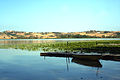 Lago di chiusi - barca.jpg
