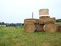 Lalande-FR-89-fête de l'agriculture 2014 à Sainpuits-04.jpg