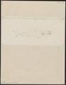 Lamna cornubica - 1700-1880 - Print - Iconographia Zoologica - Special Collections University of Amsterdam - UBA01 IZ14100075.tif