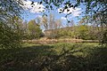 Landschaftsschutzgebiet Altarme der Saar 04.jpg