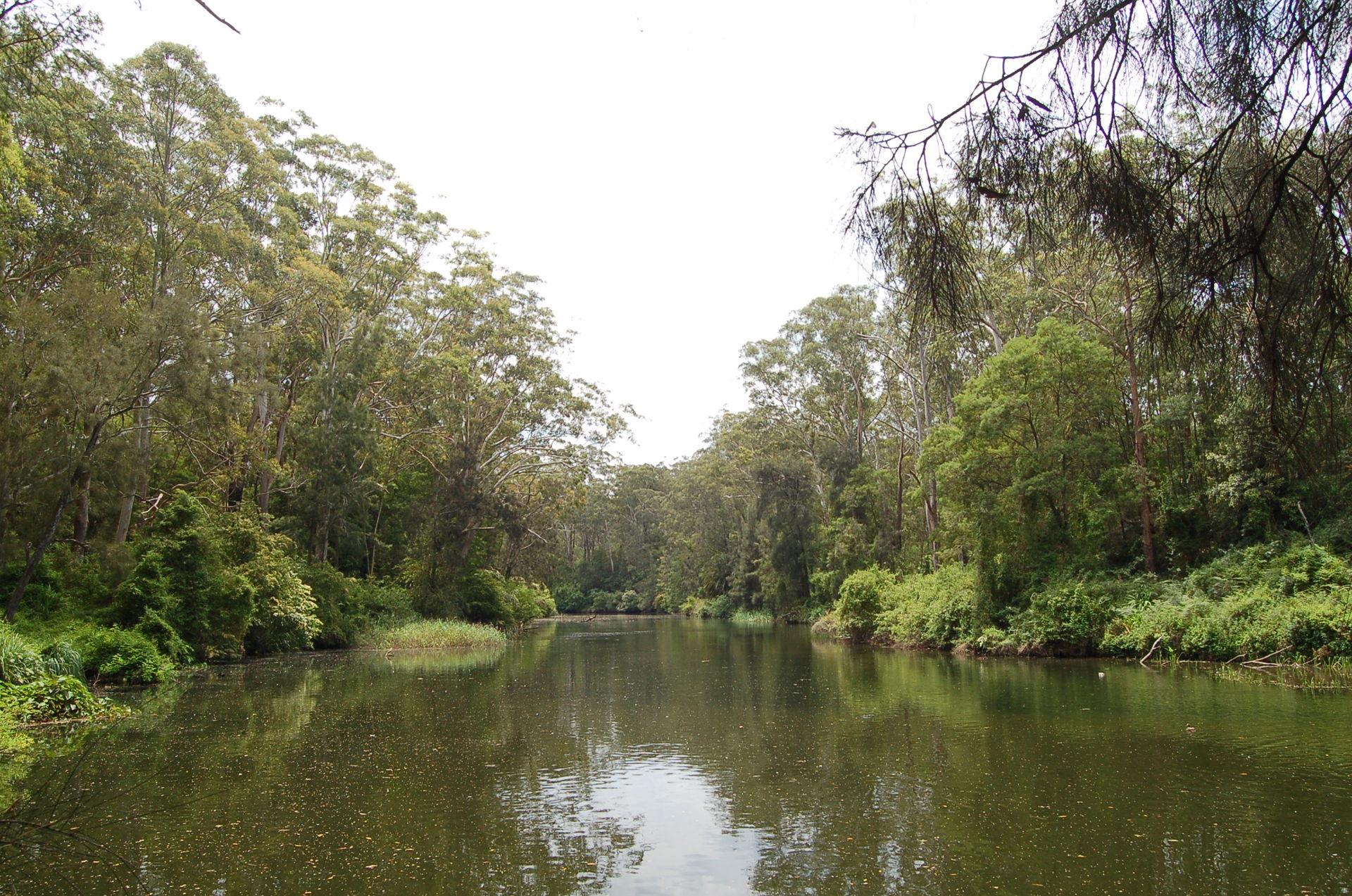 wiki biamanga national park