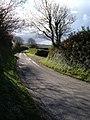Lane to Aveton Gifford - geograph.org.uk - 280823.jpg