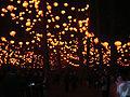Lanternes Chinoises - Parc Tête d'Or 02.JPG