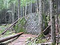 Large boulders along the Avalanche Lake Trail (4459771703).jpg