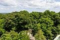Laubwälder der Königshainer Berge, Blick vom Aussichtsturm auf dem Hochstein-9583.jpg