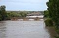 Lauffen am Neckar Hochwasser 2013 06 22 1.jpg
