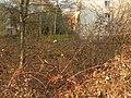 Lauterborn Weidigweg 7.jpg