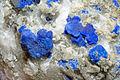 Lazurite, pyrite, calcite 7100.1.0101.jpg