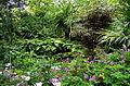 Le jardin Delaselle - Ile de Batz.JPG