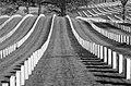 Leavenworth national cemetery (15156905782).jpg
