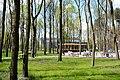 Legionowo,Polska,UE. - panoramio (76).jpg