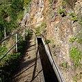 Levada Wanderungen, Madeira - 2013-01-10 - 85900210.jpg