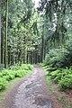 Liebesbankweg - panoramio (6).jpg