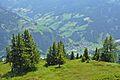 Liechtensteinkopf-Grossarltal.jpg