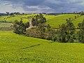 Limuru tea zone kenya.jpg