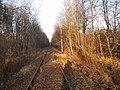 Linia kolejowa nr 103 - panoramio.jpg