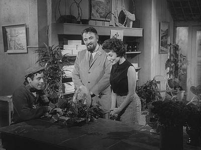 The Little Shop Of Horrors Película De 1960 Wikiwand