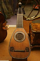 Lombardic mandolin with twelve strings (six courses)