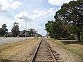 Looking north on rr tracks from Pelham Depot.JPG
