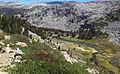 Lyell Canyon.jpg
