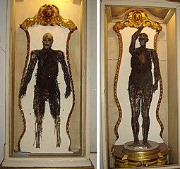 Les machines anatomiques de Raimondo Di Sangro