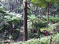 Madeira - Monte - Jardim Tropico (2092623185).jpg