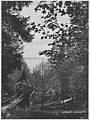 Madrona Park lookout, Seattle, ca 1906 (WARNER 48).jpeg