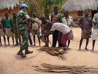 Mai-Mai Militia groups in DRC