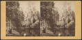 Man resting under a tree near the lake, Greenwood Cemetery, from Robert N. Dennis collection of stereoscopic views.png