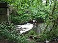 Marple River Goyt 0281.JPG