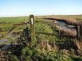 Marsh track - geograph.org.uk - 626236.jpg