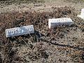McFadden Cemetery Wilson AR 2014-02-22 011.jpg