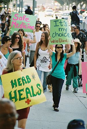 Medical cannabis in the United States - Medical cannabis supporters demonstrate in Los Angeles (August 2007)