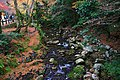 Meiji no Mori Minoh Quasi-National Park Minoh Osaka pref Japan30s3.jpg
