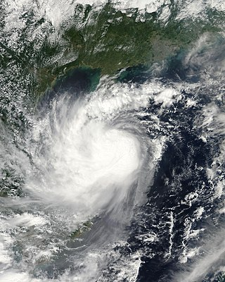 Pacific tropical storm in 2008