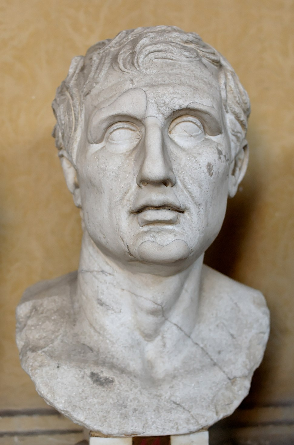 Bust of Menander. Marble, Roman copy of the Imperial era after a Greek original (ca. 343–291 BC).