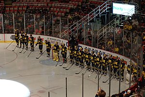 Michigan Wolverines men's ice hockey - The Michigan Wolverines at the 2015 Great Lakes Invitational
