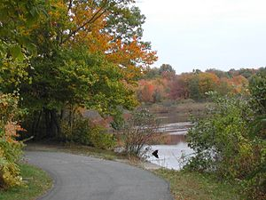 Milltown, New Jersey - The Mill Pond path