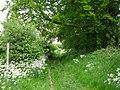 Minster Way footpath - geograph.org.uk - 1418508.jpg