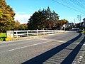 Mito ibaraki sakasa river bridge 08 yonezawa2.jpg