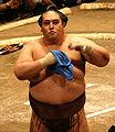 Miyabiyama Tetsushi 2008 May.jpg
