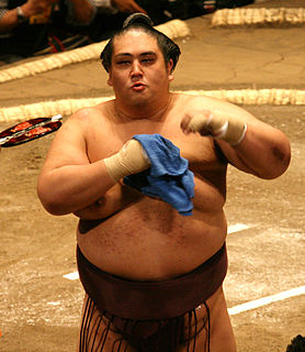 Miyabiyama Tetsushi Sumo wrestler