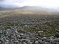Moine Bhealaidh plateau - geograph.org.uk - 232039.jpg