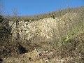 Monte Lozzo, ex cava 05.jpg