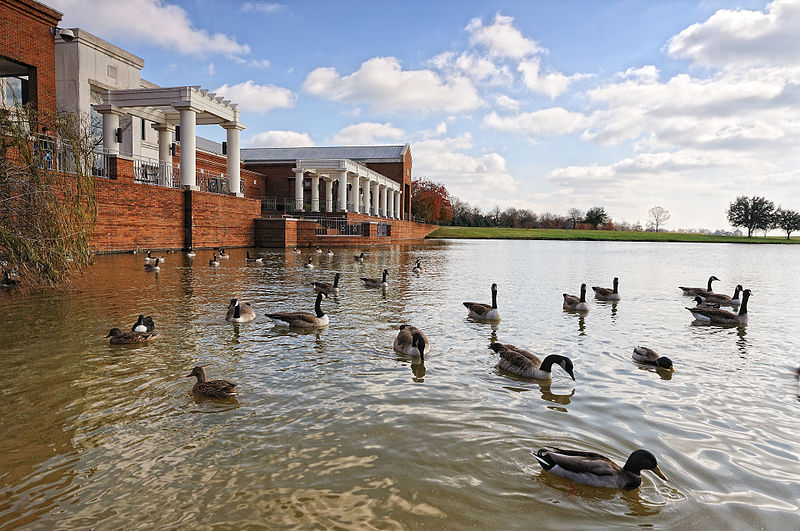 Montgomery Museum of Fine Arts, exterior with swimming geese, Alabama, USA