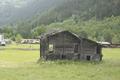 MoosViesch-20130624i.png