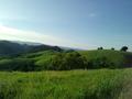 Mt. Diablo Foothills.png