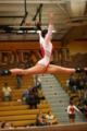 Mt Carmel Gymnastics.PNG