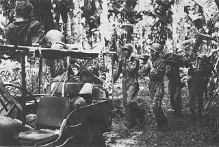 New Georgia counterattack Battle of the New Georgia campaign during World War II